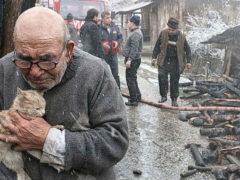 История плачущего старика, спасшегося из горящего дома с кошкой на руках, растрогала весь мир
